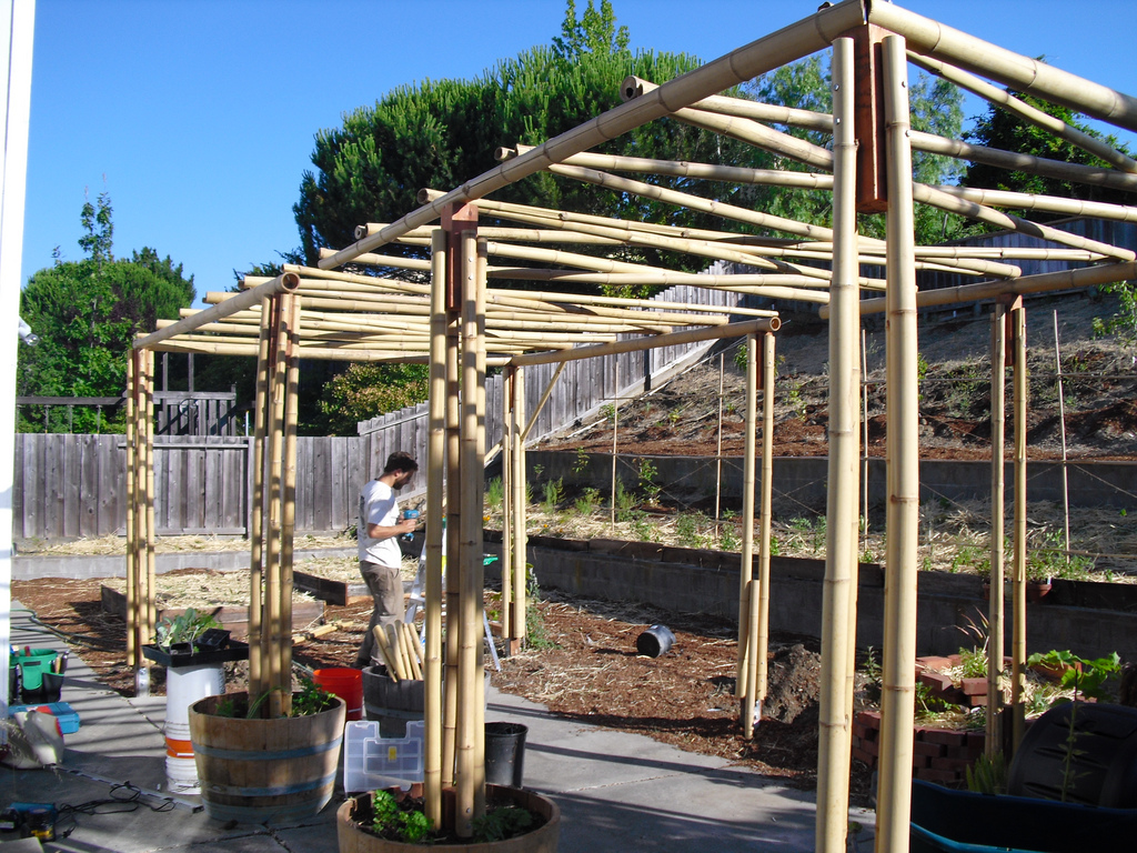 Permaculture City Sown